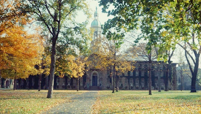 Princeton University 1978 Foundation Grant